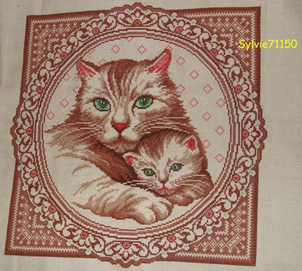 Histoire de chaton finie...