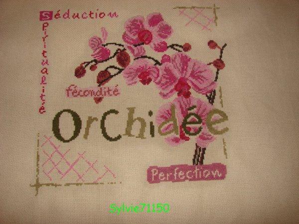 Orchidée... 6 finie