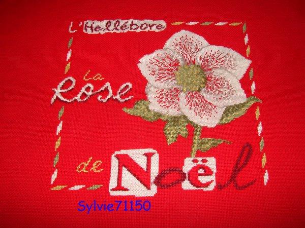 La rose de Noël. 5 finie...