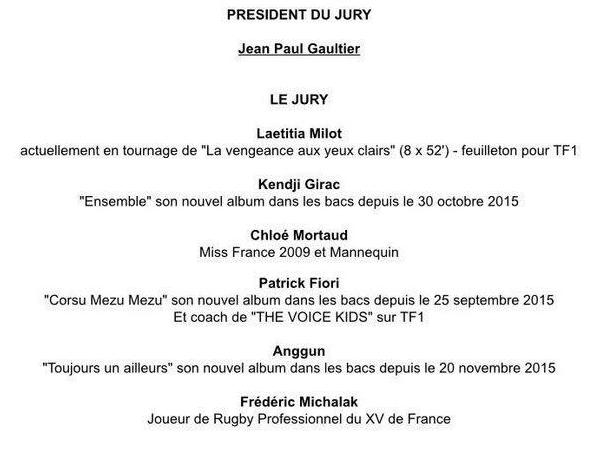 Jury Miss France 2016 !