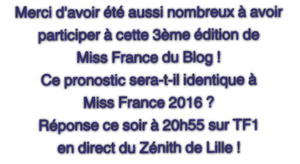 Récapitulatif Miss France du Blog