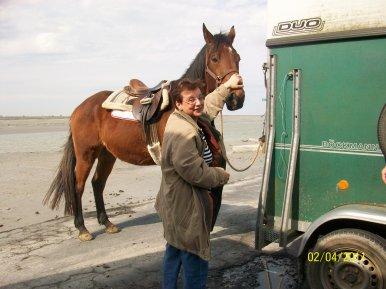 TRAVERSEE DE LA BAIE VERS TOMBELAINE ! : MAIS AVANT PETITE CARESSE A ECHEC ET MAT ! info@cheval-plaisir.com : Un grand merci à son propriétaire : Guide de la baie à cheval ! Qui nous a permis ce petit moment de PLAISIR !!!
