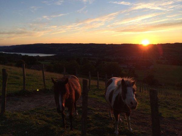 Couché de soleil sur le Lac de Paladru