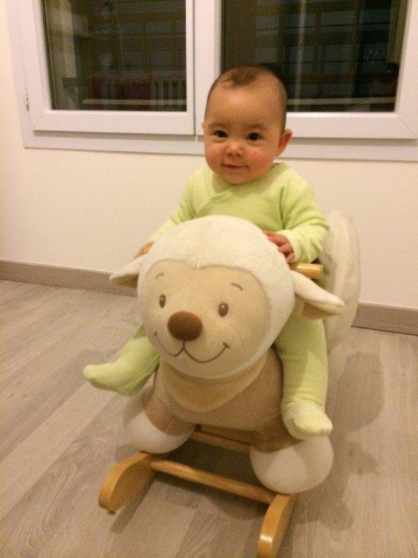 Mouton !