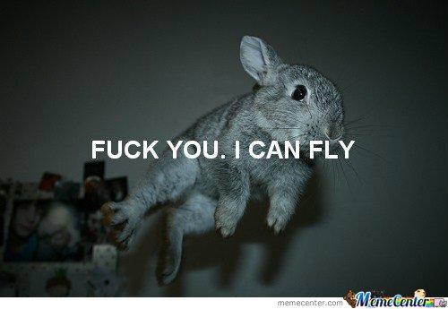 Le Lapin qui vole ;))