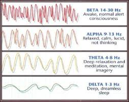 Neuroptimal, millori els seus resulats organitzant les xarxes neuronals