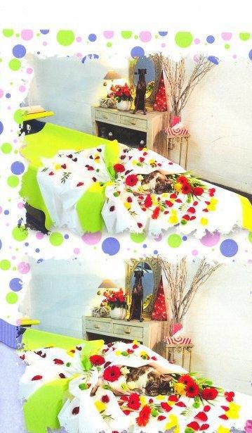 DODO92100  fête ses 60 ans demain, pense à lui offrir un cadeau.Aujourd'hui à 07:18