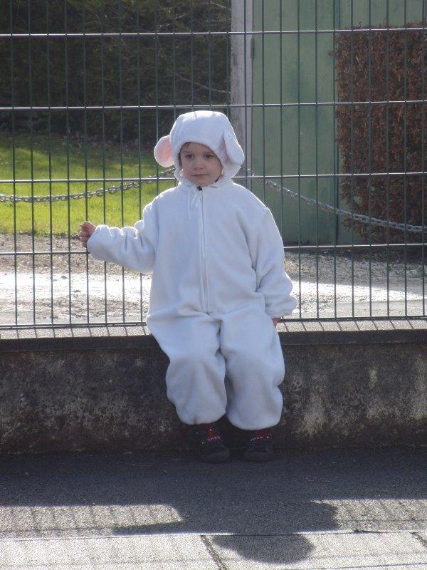 Mon petit mouton