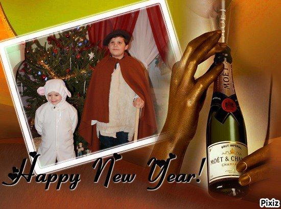 Bonne Année mes Ami(e)s