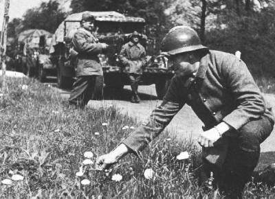 """La """"Drôle de guerre"""": I) Insuffisances et incohérences des forces françaises."""