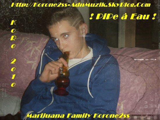 Koro 2o1o  P r e s e n t e --->  Marijuana Korone2ss Family 2o1o !!!