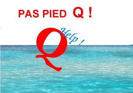 Pas Pied Q