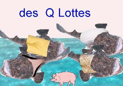 Q Lottée