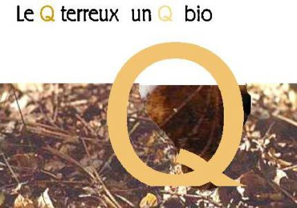 Un Q Bio