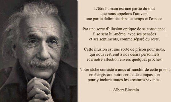 Albert Einstein - L'être Humain