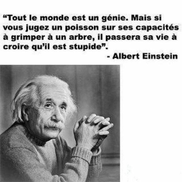 Albert Einstein - Jugez