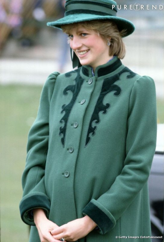 Princess Diana Biography - The Birth of a Prince