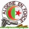 karim-algerien345