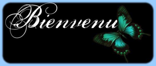 BIENVENNUE