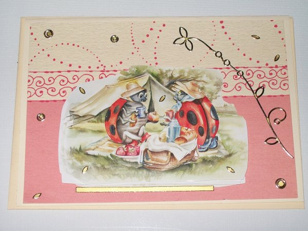 carte coccinelle