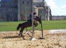 Photo de polo--d--espoir