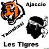 les-tigre-84