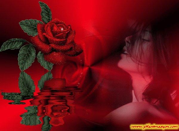 magnifique  visage  de  femme   as  la  rose  rouge