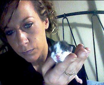 moi ey mon baby chaton trop mimi <3