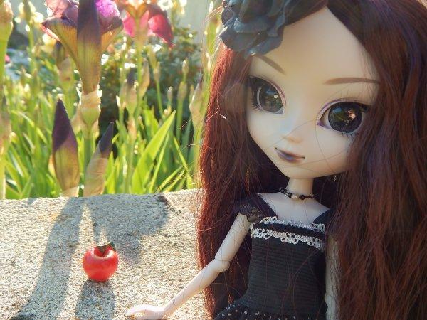 L'heure du thé pour Asa + Une photo de Neko'