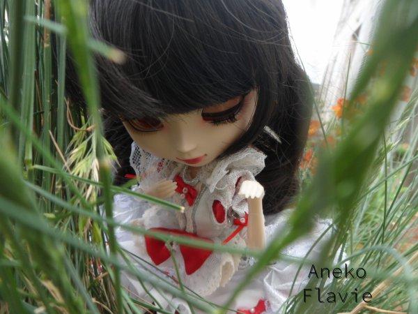 PHOTOSHOOT: Hae Jun ♥ Promenons-nous!