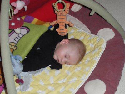 une petite sieste pour nono