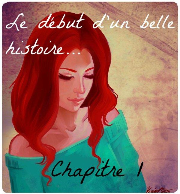 Chapitre 1 - Le début d'une belle histoire... -
