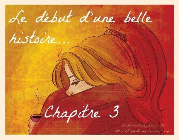 Chapitre 3 - Le début d'une belle histoire... -