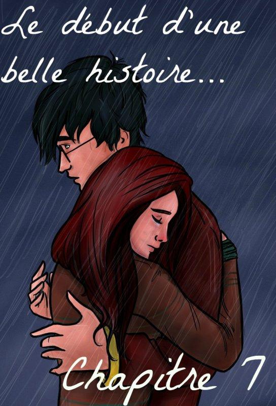 Chapitre 7 - Le début d'une belle histoire... -