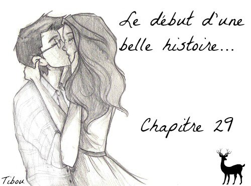 Chapitre 29 - Le début d'une belle histoire... -