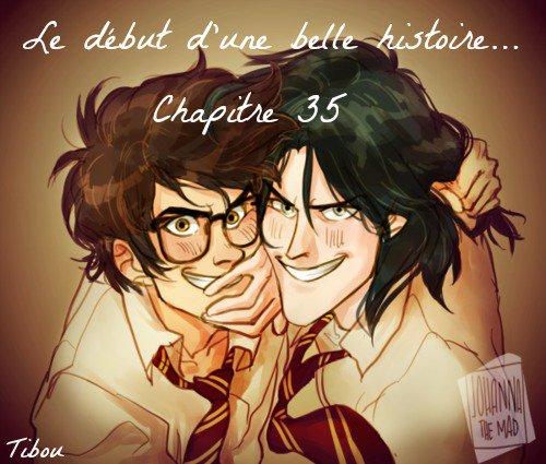 Chapitre 35 - Le début d'une belle histoire... -