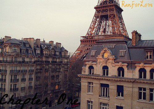 Run For Love                                                            Merry Christmas                                                                                                Chapter One