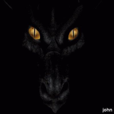 mon dragon noir