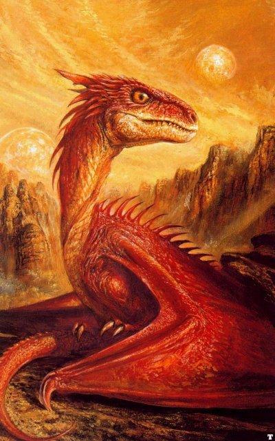 mon dragon rouge