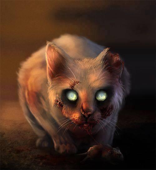 Ca c'est bien mon chat, tel maître tel chat :)