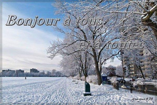 Bonjour à tous et à toutes - Aujourd'hui carnaval de Québec - Les Plaines d'Abraham sous la neige québécoise