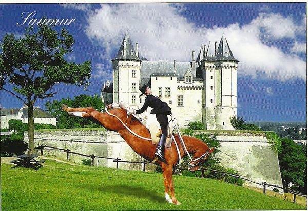 """Bonjour, aujourd'hui petite visite à Saumur, ville de France réputée pour son école de cavalerie et le """"Cadre Noir de Saumur"""""""