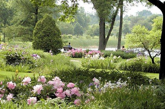 Aujourd'hui, quelques vues de jardins et pièces d'eau d'été.