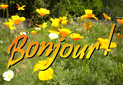 Bonjour à tous, aujourd'hui, quelques vues de jardins et pièces d'eau d'été.