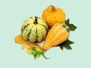 Comment étaler les beautés de l'automne en superbes vues sans consentir une part aux fruits délicieux de cette saison.