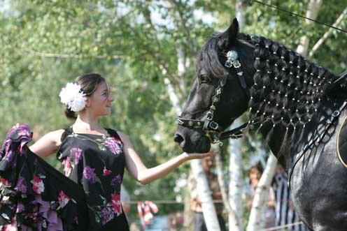 Simplement une énorme envie de l'évoquer en photos par de beaux chevaux noirs - Tu nous manques tellement Favo -