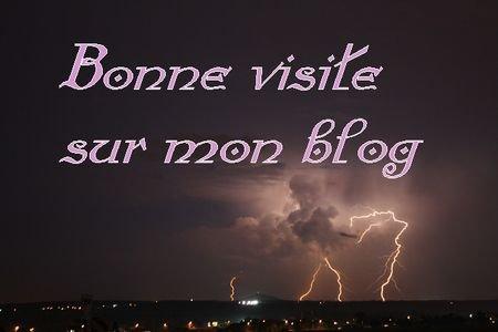 Bonjour à tous et à toutes, je vous souhaite une bonne visite sur mon blog.