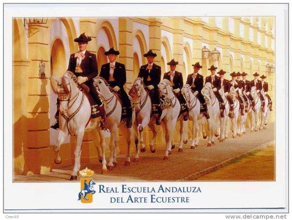 Ecole Royale andalouse d'art équestre