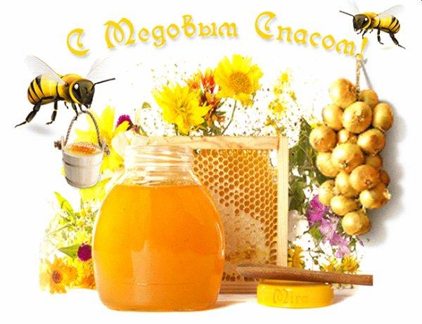 Protégeons nos abeilles