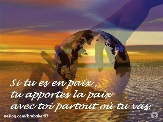 Citation du net